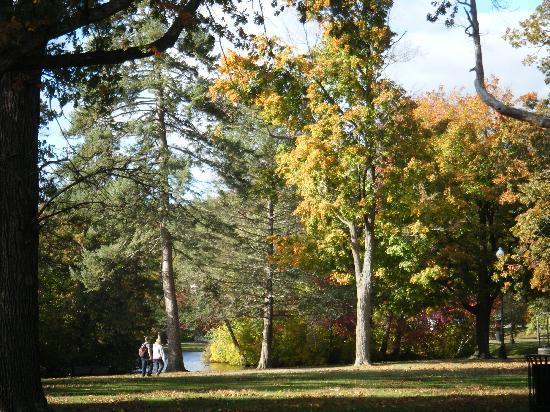 Enjoyable outdoor walk in nature